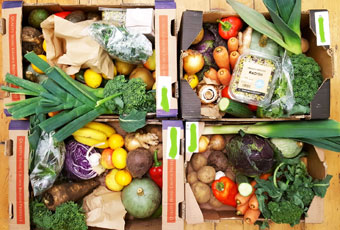 Our new organic fruit and/or veg boxes are available for collection or delivery